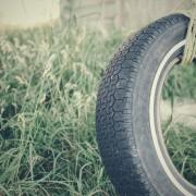 grass-swing-tire-70300